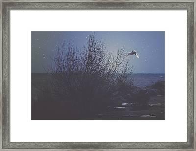 The Owl Framed Print by Carrie Ann Grippo-Pike