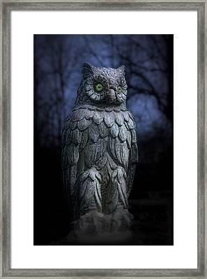 The Owl Framed Print by Tom Mc Nemar