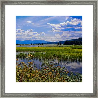 The Pack River - Hope Idaho Framed Print by David Patterson