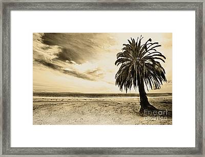 The Palm Swayed As The Storm On The Ocean Blew In Framed Print by Artist and Photographer Laura Wrede