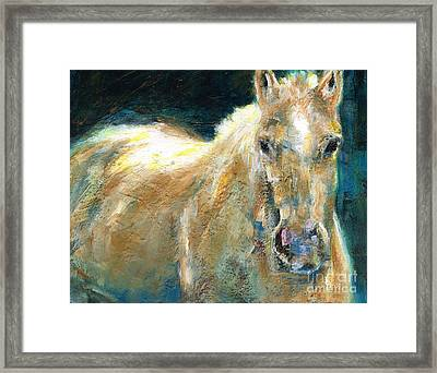 The Palomino Framed Print by Frances Marino