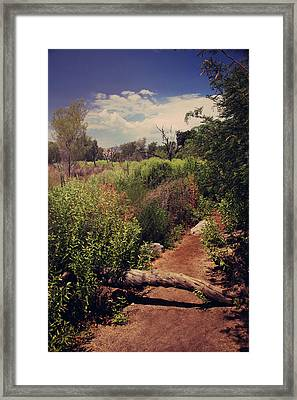 The Past Is Gone Framed Print by Laurie Search