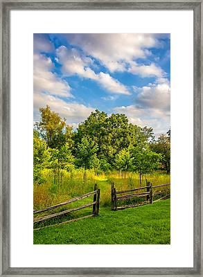 The Path Framed Print by Steve Harrington