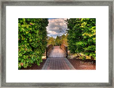 The Path To The Garden Framed Print by Mark Dodd