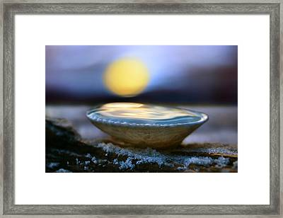 The Pearl Framed Print by Laura Fasulo