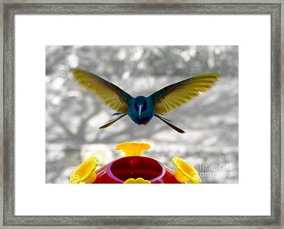 The Perfect Approach Framed Print by Al Bourassa
