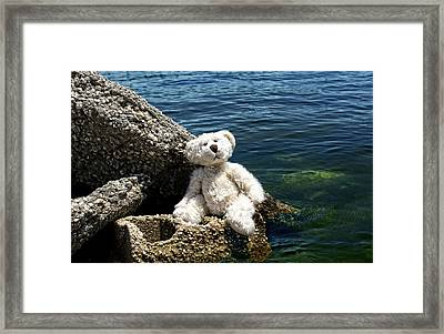 The Philosopher - Teddy Bear Art By William Patrick And Sharon Cummings Framed Print by Sharon Cummings