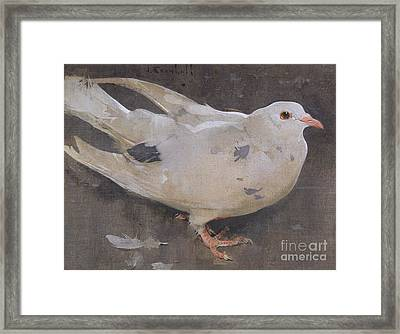 The Pigeon Framed Print by Joseph Crawhall
