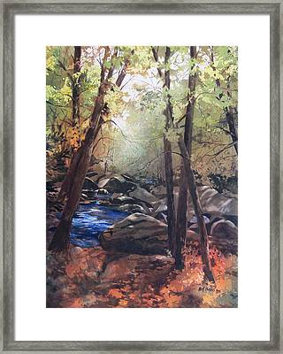 The Pilgrimage Framed Print by Kris Parins