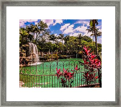The Place To Relax Framed Print by Zina Stromberg