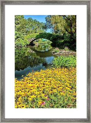 The Pond Framed Print by Karol Livote