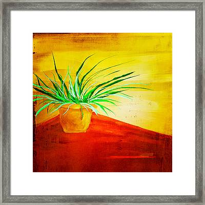 The Pot Plant Framed Print by Brenda Bryant