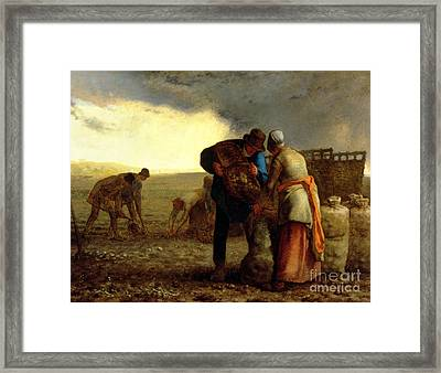 The Potato Harvest Framed Print by Jean Francois Millet
