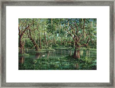 The Preacher And His Flock Framed Print by AnnaJo Vahle