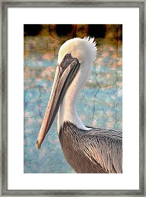 The Prince Framed Print by Debra and Dave Vanderlaan