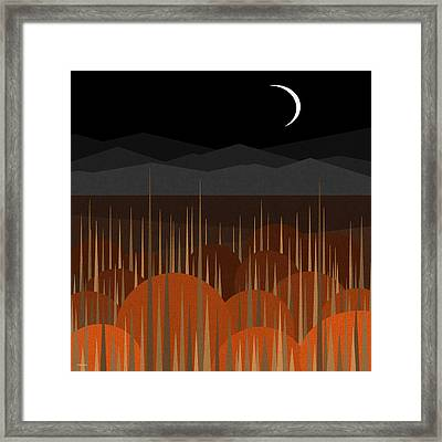 The Pumpkin Patch Framed Print by Val Arie