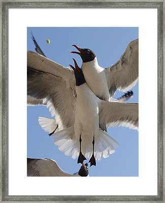 The Quick The Strong The Satisfied Framed Print by James Granberry