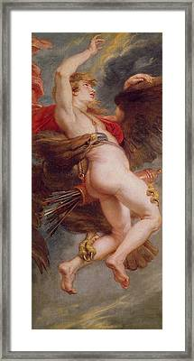 The Rape Of Ganymede Framed Print by Rubens