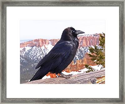 The Raven Framed Print by Rona Black
