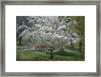 The Red Bench Framed Print by Ylli Haruni