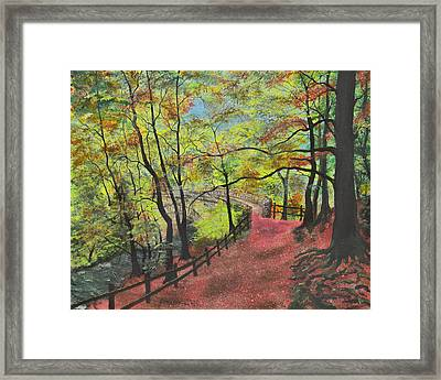 The Red Path Framed Print by Leo Gehrtz
