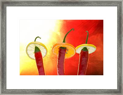 The Red - The Hot - The Chili Framed Print by Alexander Senin