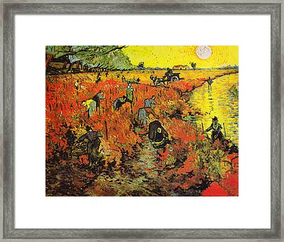 The Red Vineyard At Arles Framed Print by Celestial Images