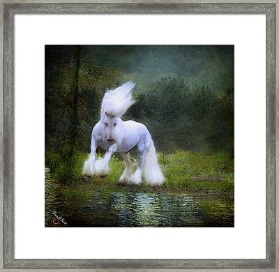 The Reflection Framed Print by Fran J Scott