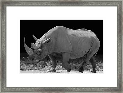 The Rhino Framed Print by Art Spectrum