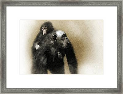The Ride Home Framed Print by Dan Holm