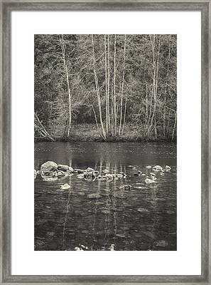 The River II Framed Print by Marco Oliveira