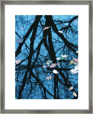 The River Framed Print by Todd Sherlock