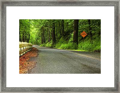 The Road Ahead Framed Print by Andrew Soundarajan