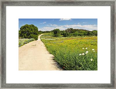 The Road Home Framed Print by Lynn Bauer