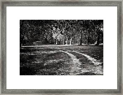 The Road Less Than Way Much Less Traveled  Framed Print by Olivier Le Queinec