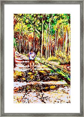 The Road Not Taken Framed Print by Carole Spandau
