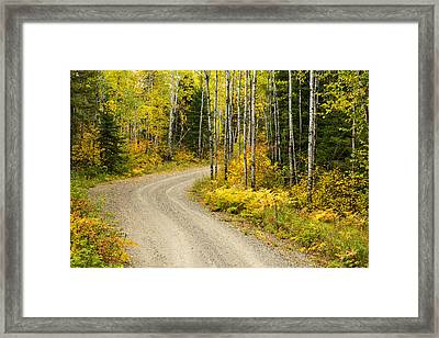 The Road To Bob Bay Framed Print by Adam Pender