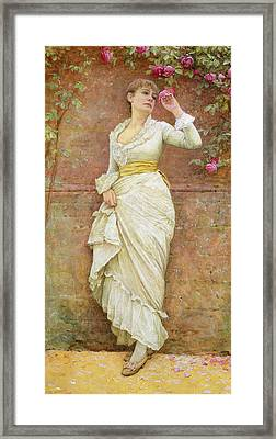 The Rose Framed Print by Edward Killingworth Johnson