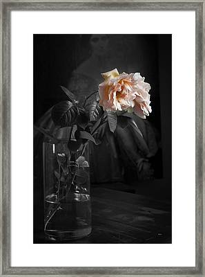 The Rose Grew Pale And Left Her Cheek Framed Print by Theresa Tahara