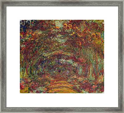 The Rose Path, Giverny, 1920-22 Oil On Canvas Framed Print by Claude Monet