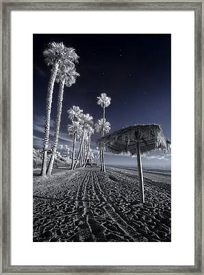 The Rover On Holiday Framed Print by Sean Foster