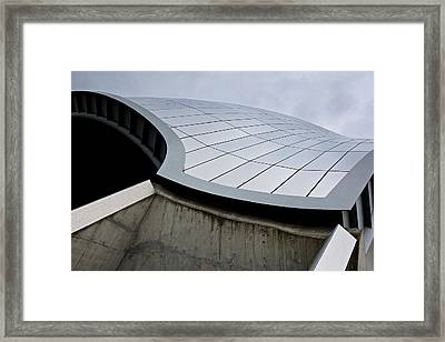 The Sage Framed Print by Stephen Taylor