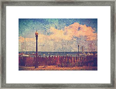 The Salty Air Sea Breeze In Her Hair Iv Framed Print by Aurelio Zucco