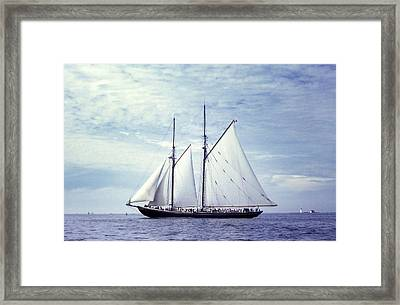 The Schooner Bluenose 2 Again Framed Print by George Cousins