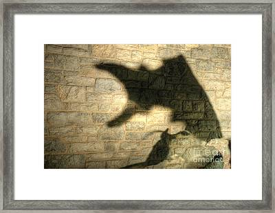 The Shadow And The Tail Framed Print by Mark Dodd