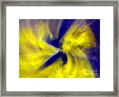 The Shaman Framed Print by Douglas Taylor