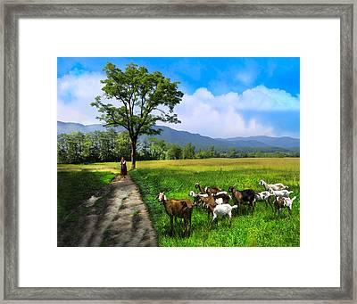 The Shepherdess Framed Print by Debra and Dave Vanderlaan