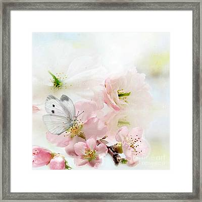 The Silent World Of A Butterfly Framed Print by Morag Bates