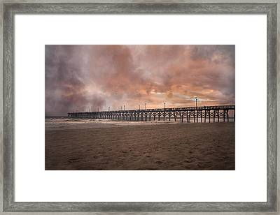 The Simple Purity Of Living Framed Print by Betsy Knapp