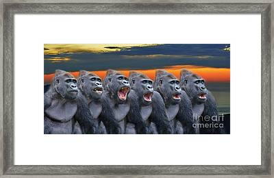 The Singing Gorillas Framed Print by Jim Fitzpatrick
